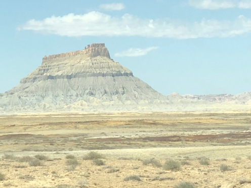 Vast vibrant wasteland